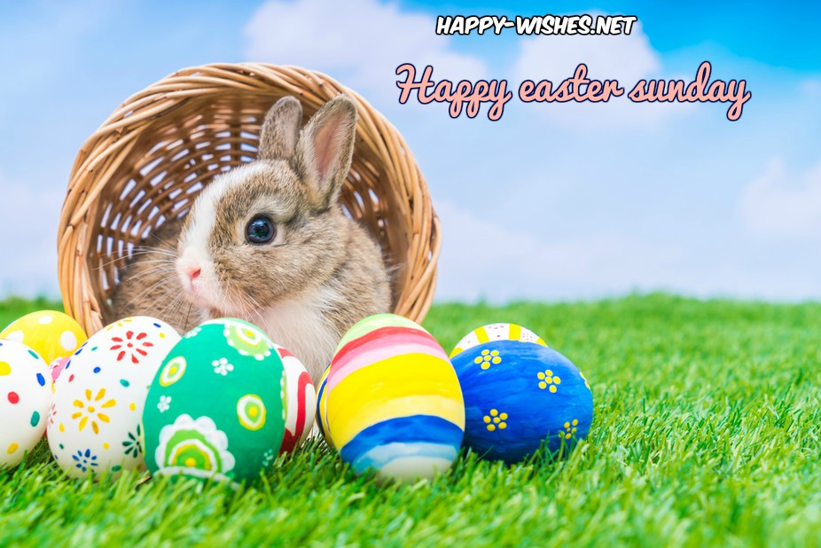 happy-easter-bunny-image