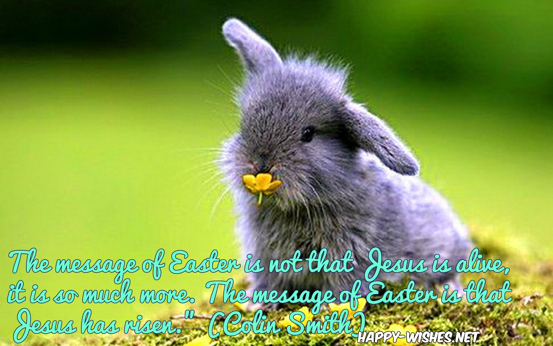 easter-quotes-for-friends-cute-bunny
