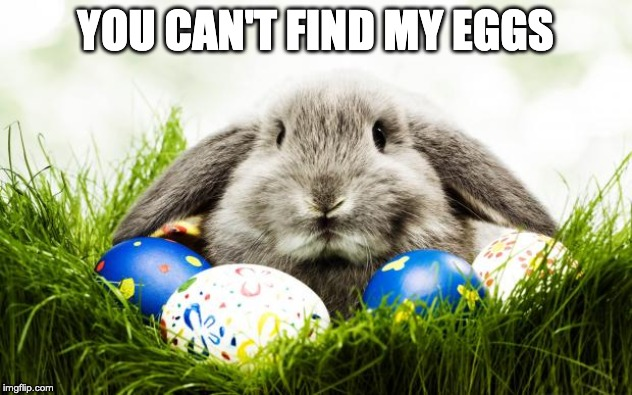 you can't find my eggs meme