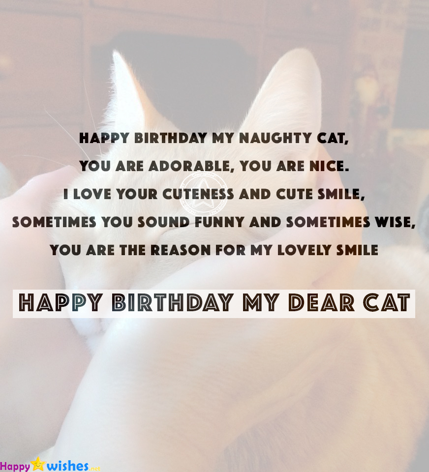 Superb Happy Birthday Wishes For Cats Quotes Images Memes Personalised Birthday Cards Epsylily Jamesorg