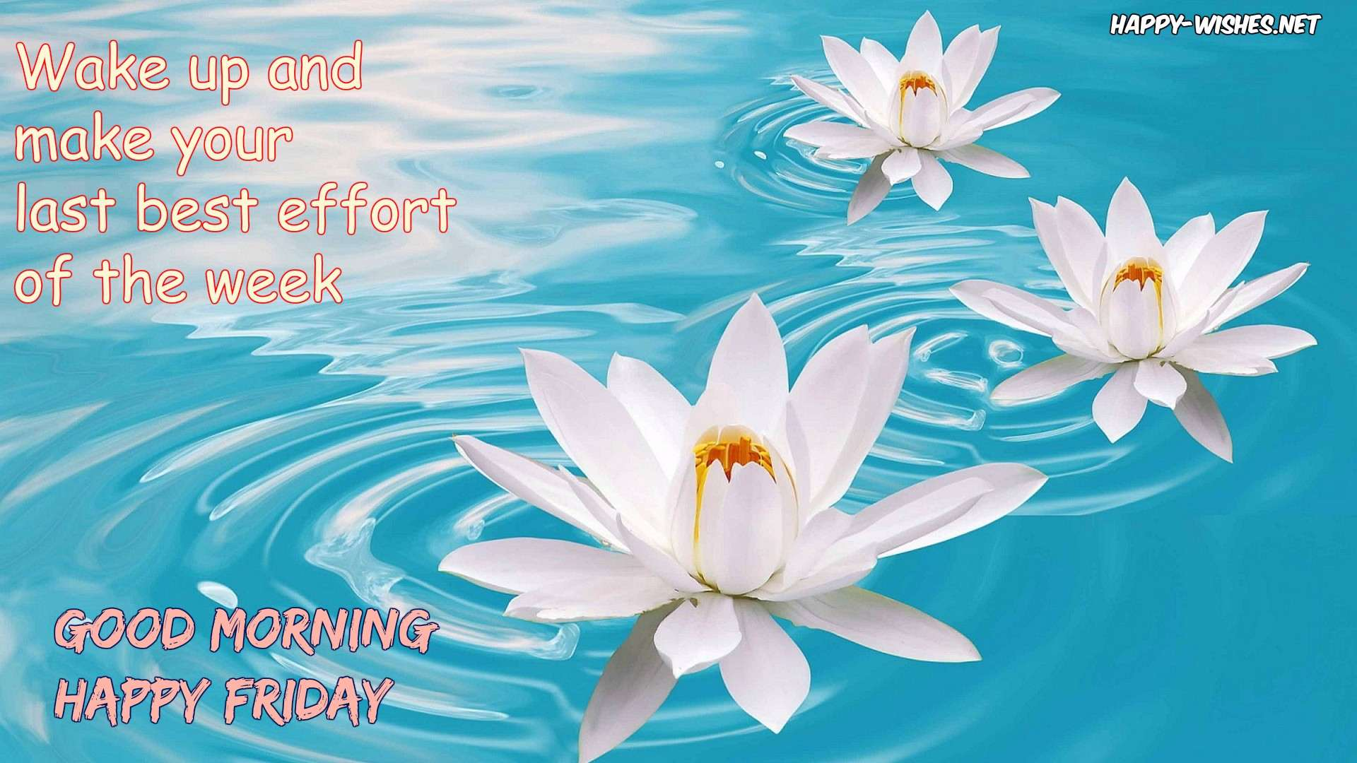 Good Morning wishes on Friday - Pictures