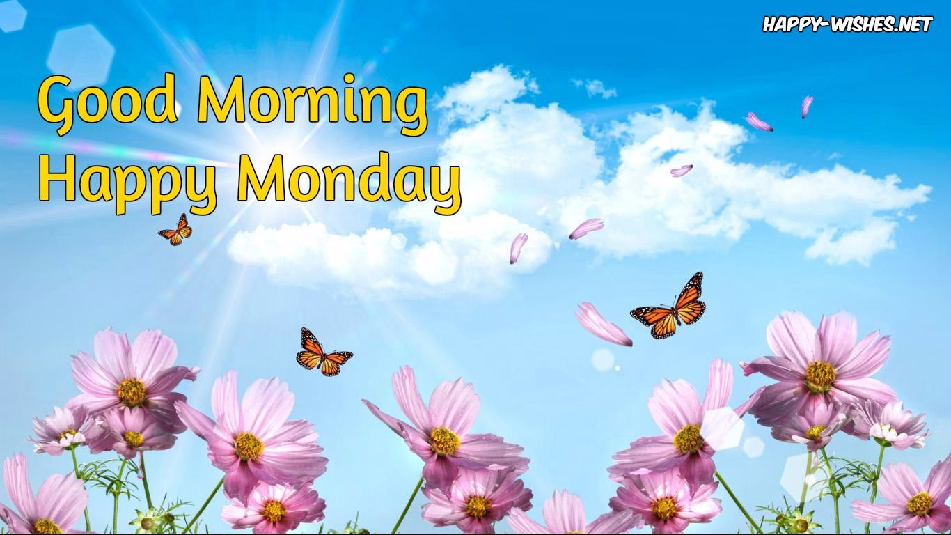 good morning Happy Monday butterfly