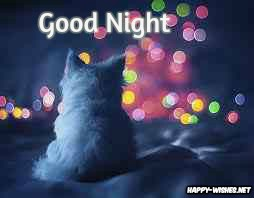 Good night best wishes