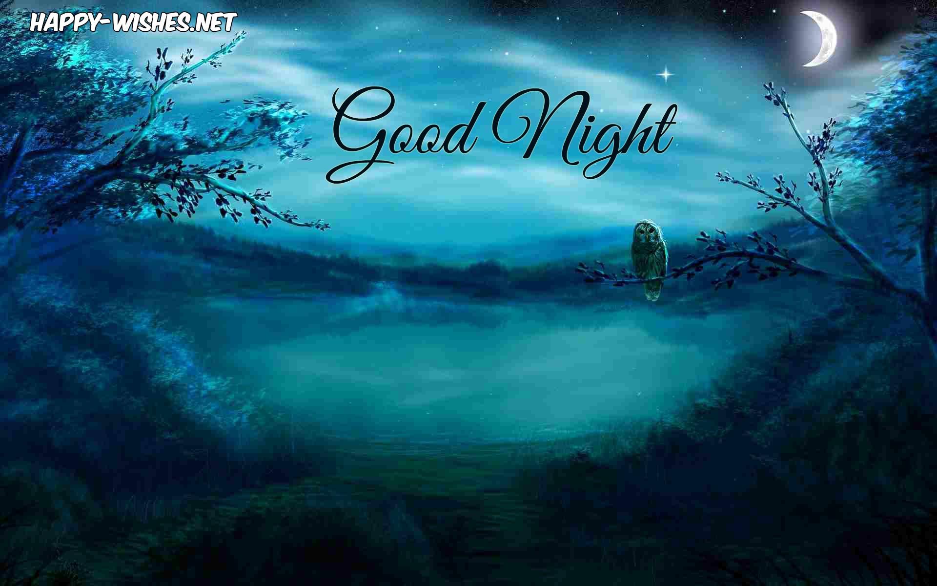Beautiful night wishes