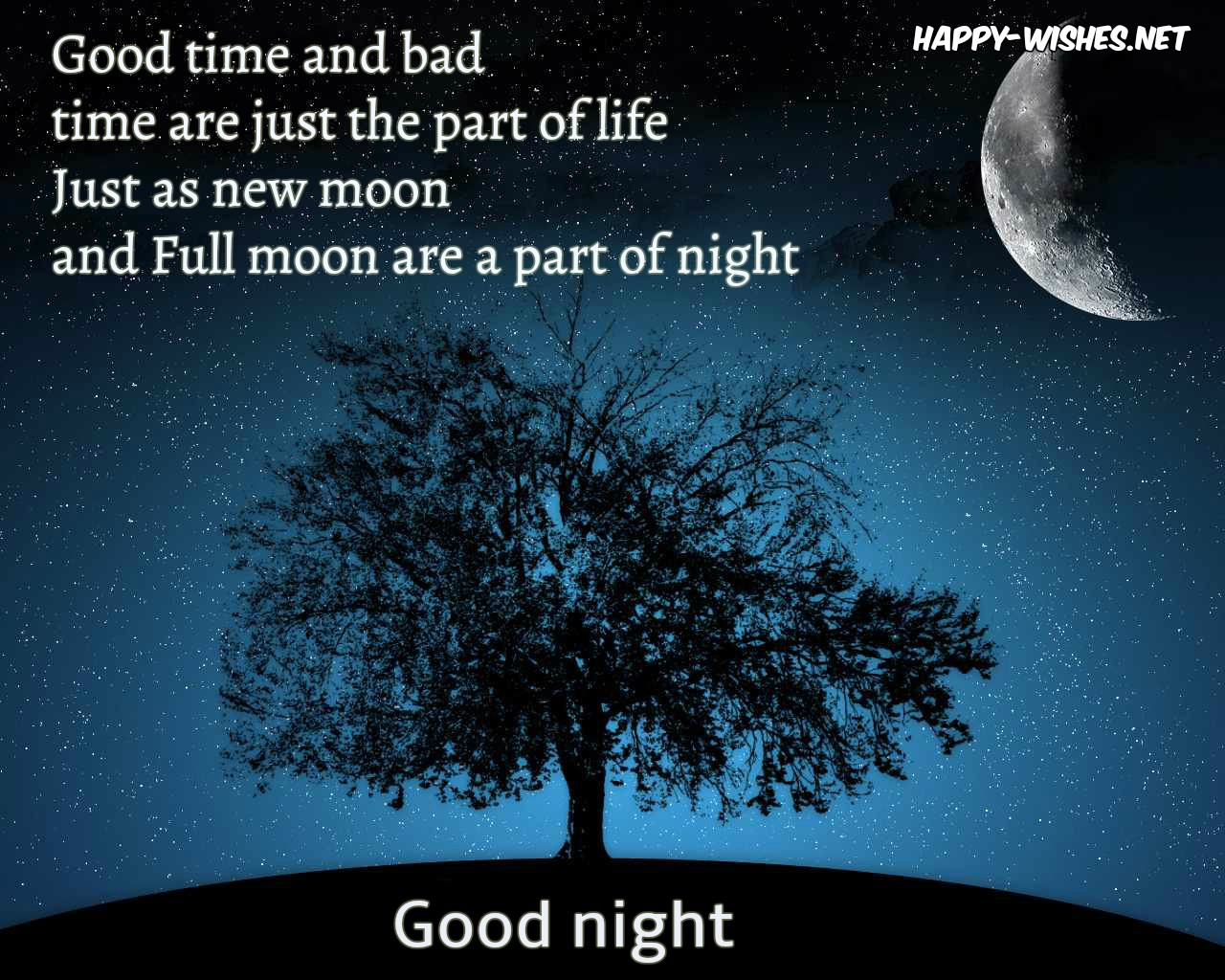 40+ Best Good Night Wishes Quotes and Images
