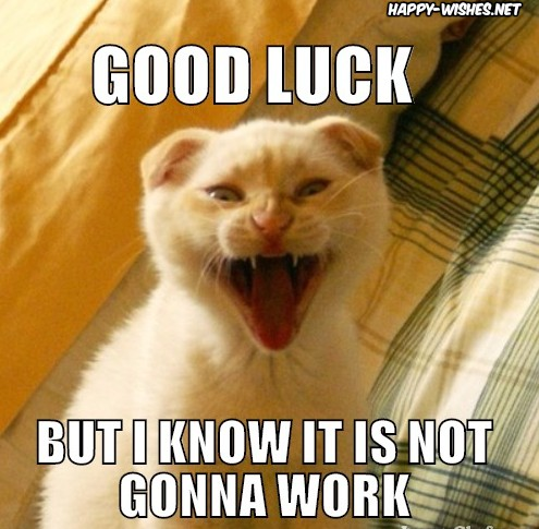 sarcastic best Good luck memes