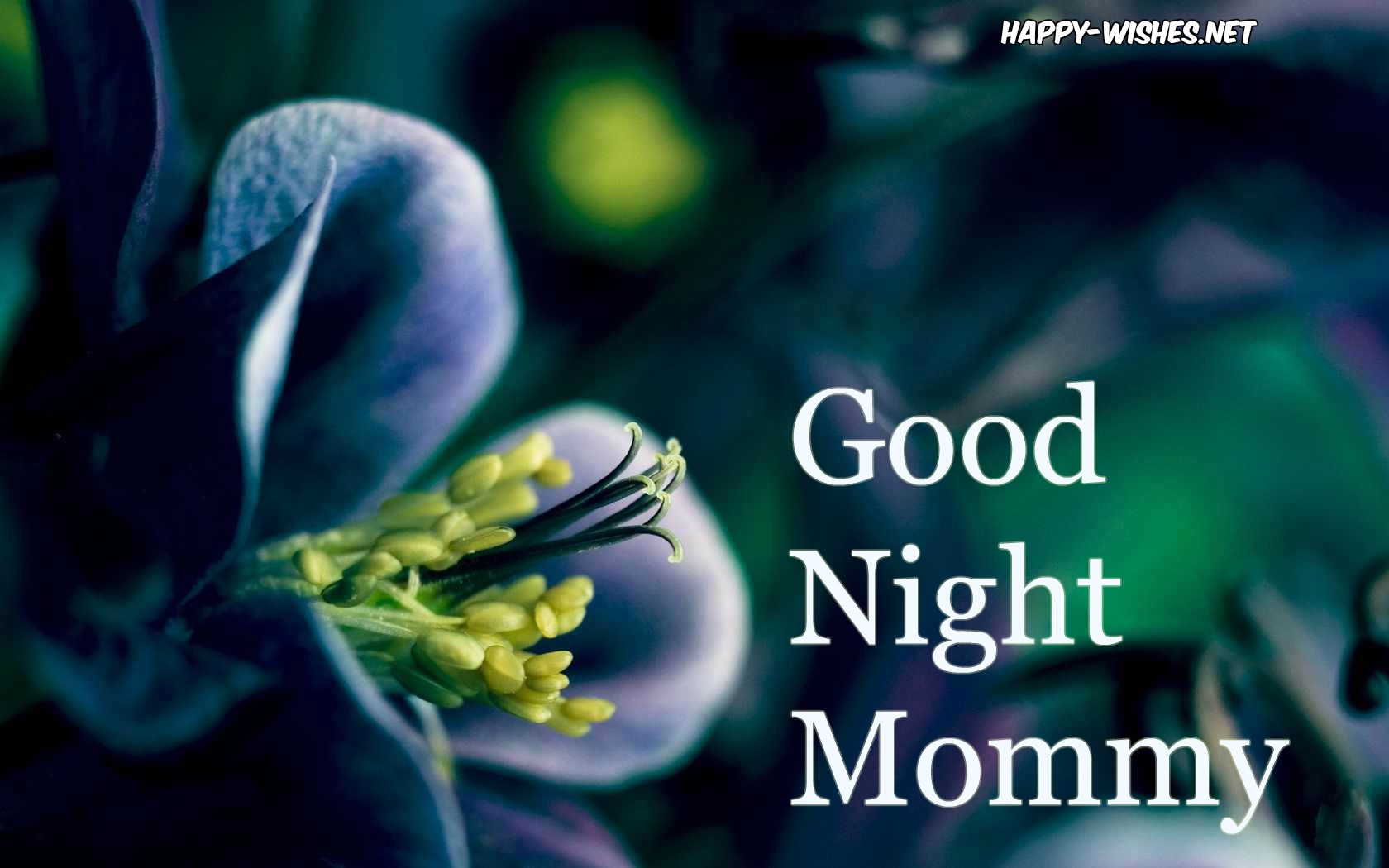 Good Night images for mom