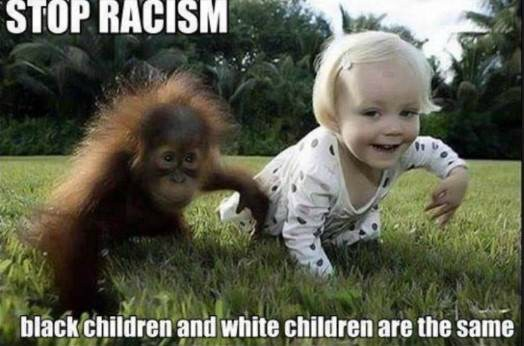 Black and white Kids Funny Racist Memes