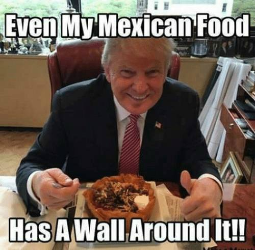Donald Trump Meme on Mexican Wall