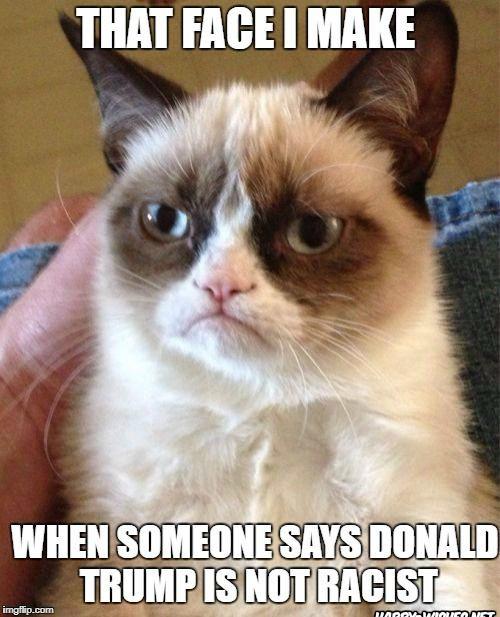 Funny Racist Memes on Donald Trump