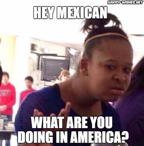 Mexicans should leave america meme