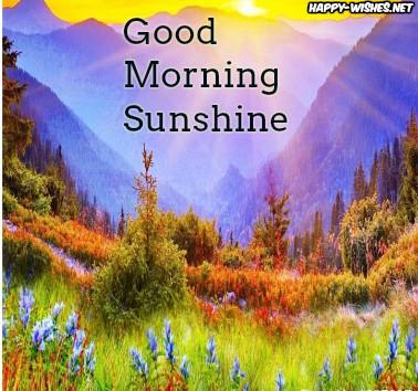 Beautfull valley good morning sun shine images - Copy