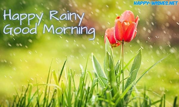Beautiful flower in RainySeason