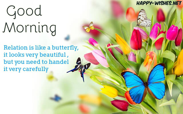 Cute Images Of Butter Flyin Good Morning wishes
