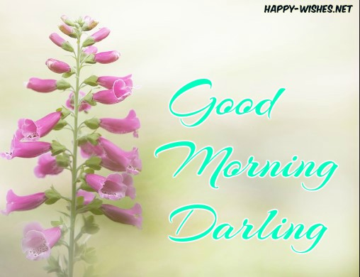 Good Morning Darling best back ground imags