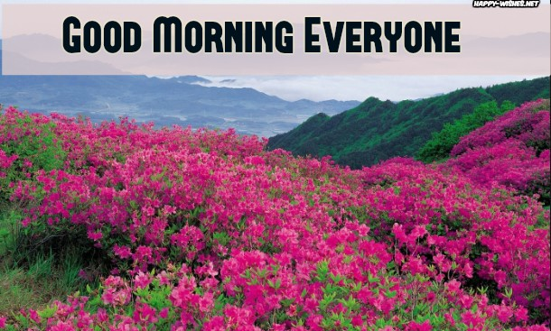 Good Morning Everyone Images