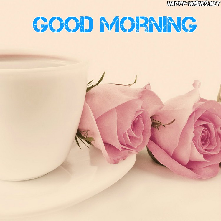 Good Morning Pink Roses images