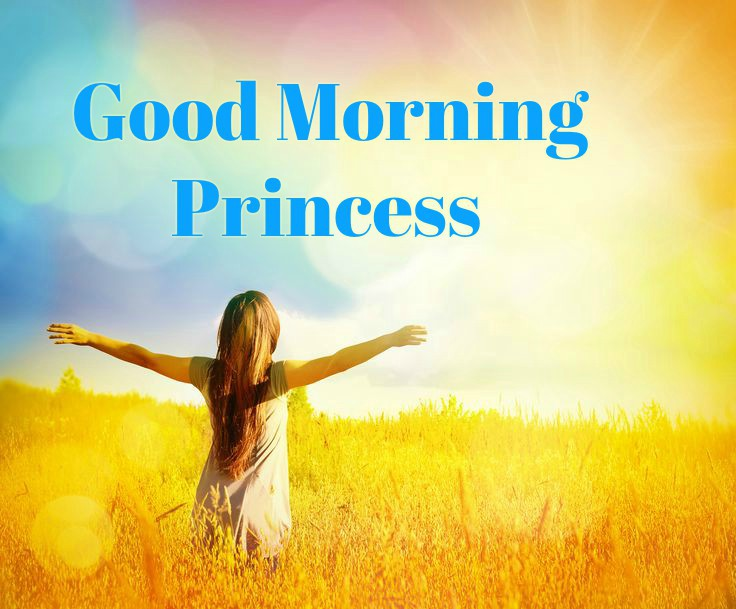 Good Morning Princess Wishes With Girl In Background images