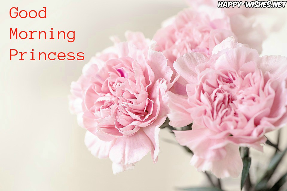 Good Morning Princess Wishes in Pink Flower images
