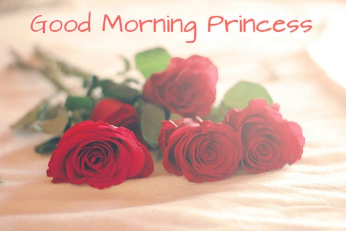 Good Morning Princess With Rose Images