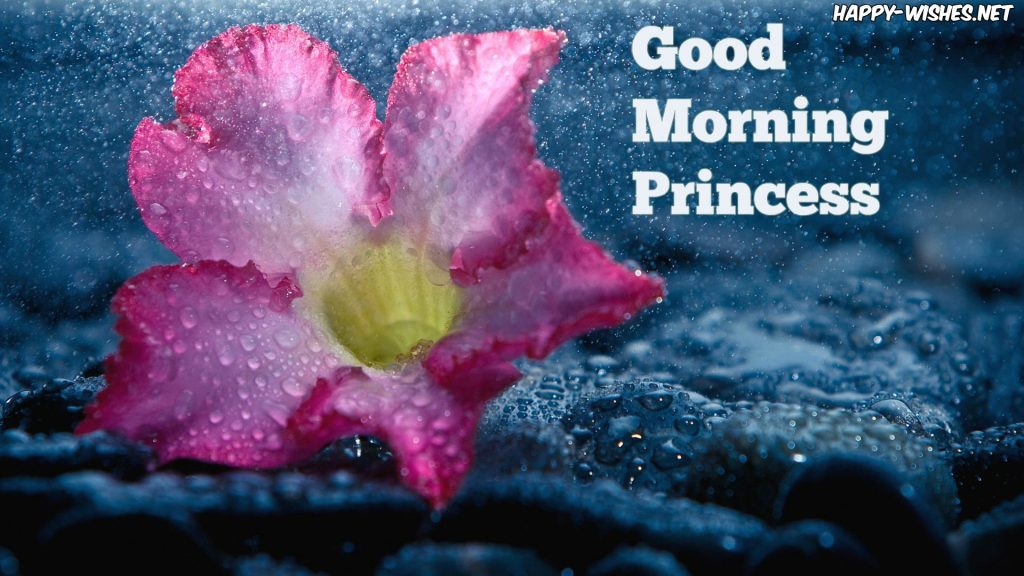 Good Morning Princess wishes images