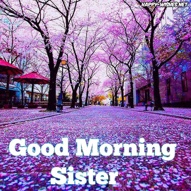 Good Morning Sister With Beautiful Nature BackGround Images