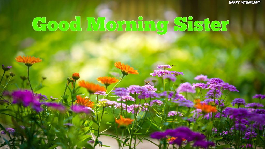 Good Morning Sister with flower back ground images