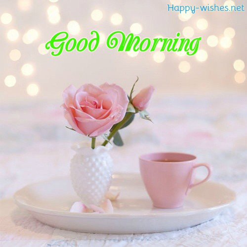 Good Morning Wishes With Cute Rose vass Pictures