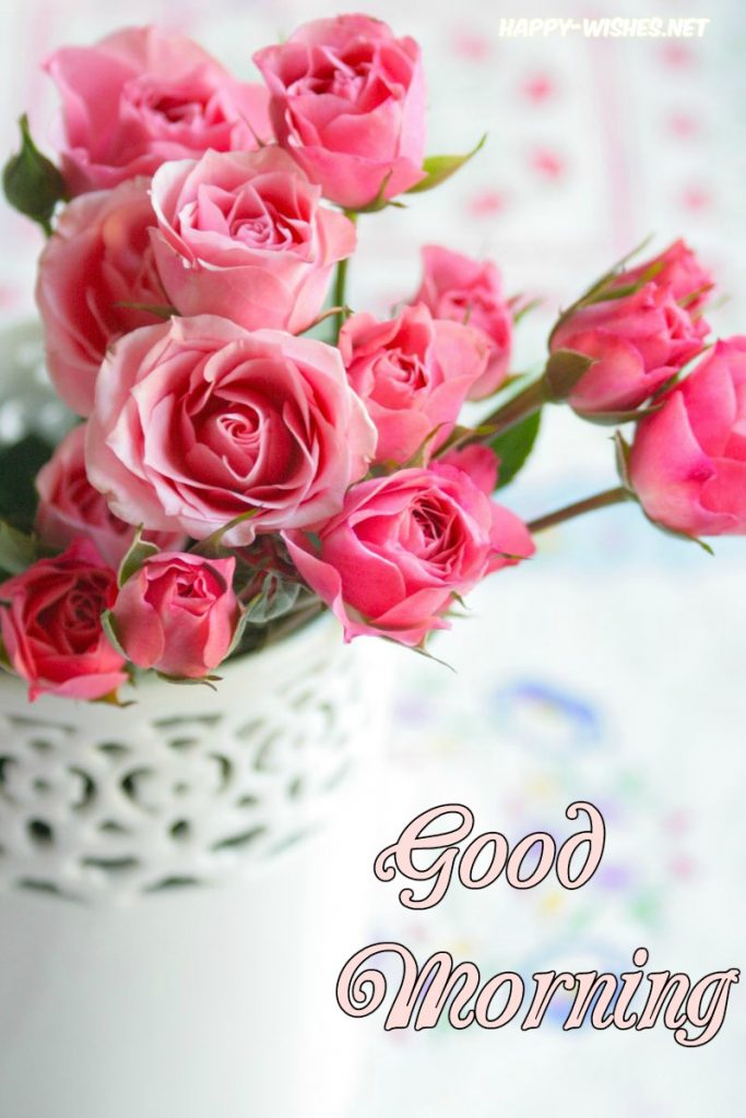 Good Morning Wishes With Lovely Rose Picture