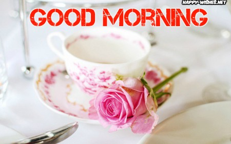 Good Morning Wishes With Morning Rose Pictures