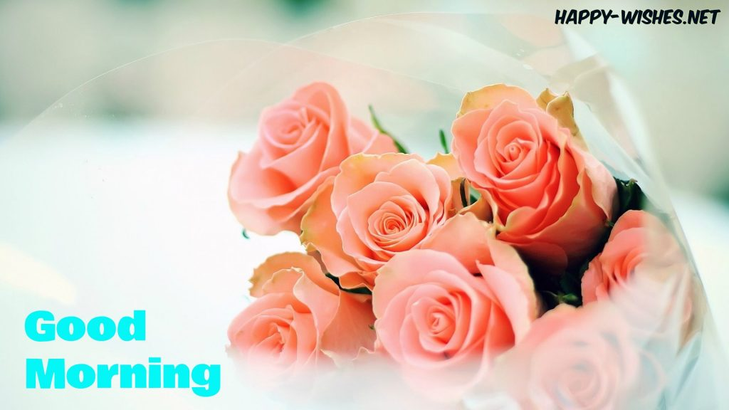Good Morning Wishes With Peach Rose Pictures