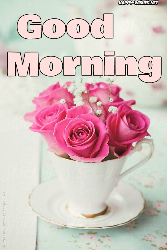 Good Morning Wishes With Rose Cup Pictures