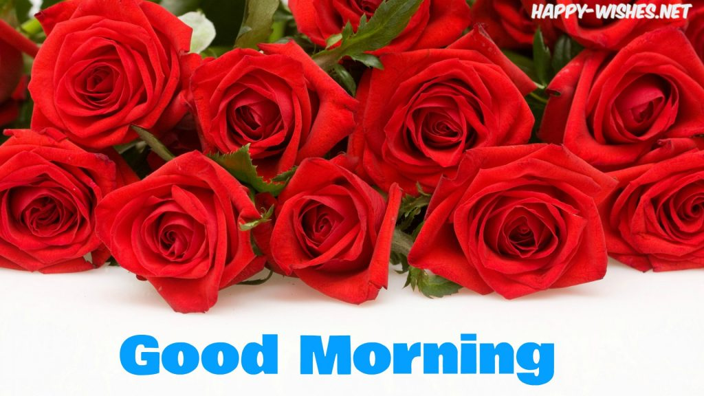 Good Morning Wishes With Rose bucket Pictures