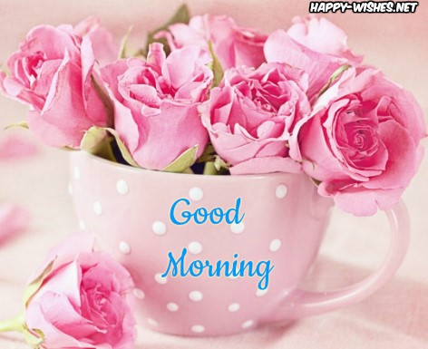Good Morning Wishes With Rose in morning Pictures