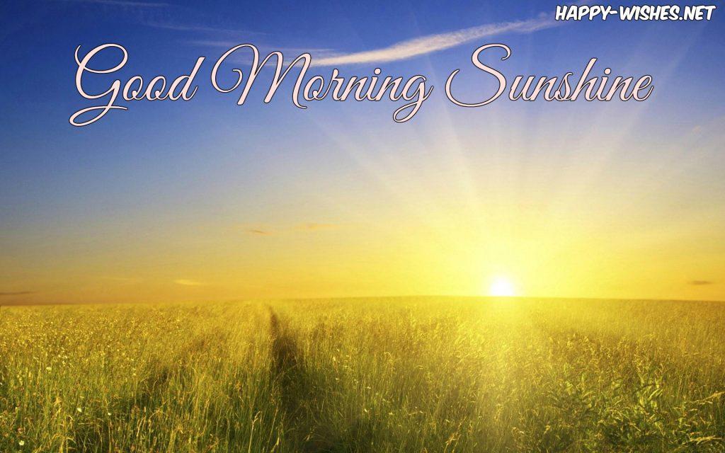 Good Morning beautiful sun shining images