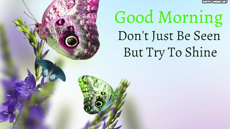 Good Morning wishes with Shining butterfly images