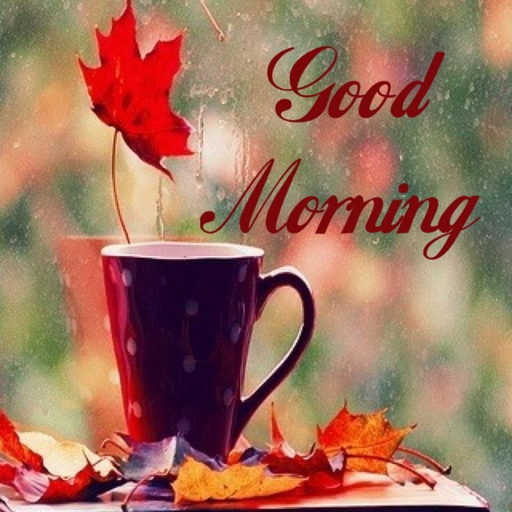 Good Morning with coffee cup in rainy days