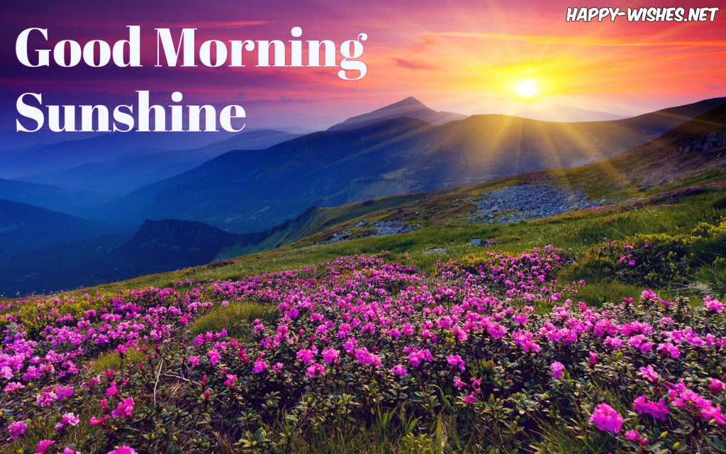 Good morning sun shine mountain view images