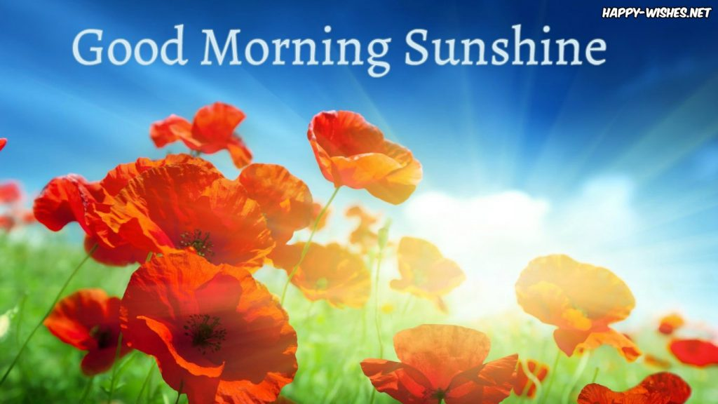 Good morning sun shine with Flower images