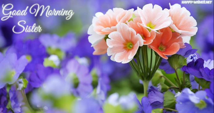 30 Good Morning Wishes for sister