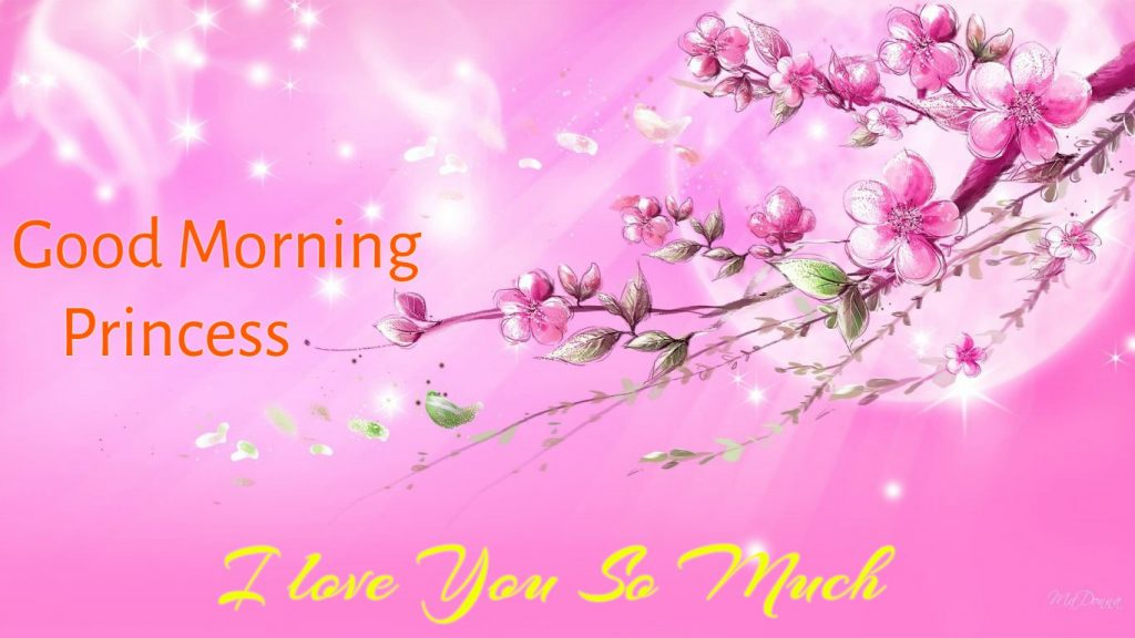 Lovely Good Morning Princess Images