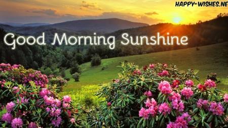 Mountain Sun rise Good morning sun shine images
