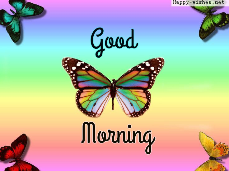 Rainbow Butterfly Good Morning images