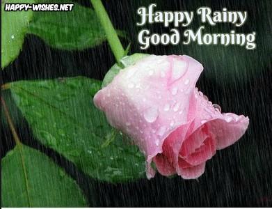 Lovely Rainy Morning wishes