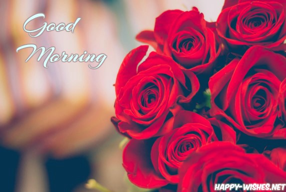 Vibrant Red Roses in Good Morning Wishes