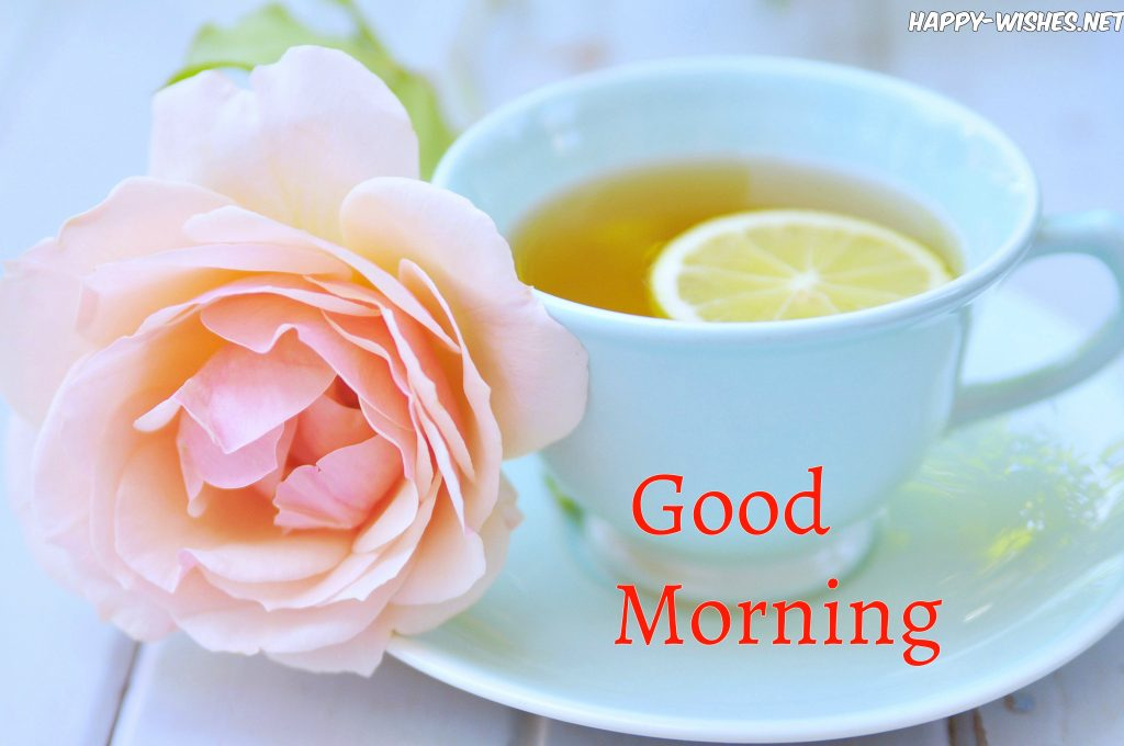 beautiful Breakfast table Good morning wishes with Rose images