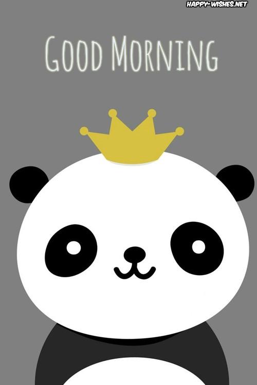 Animated Panda Good Morning Images