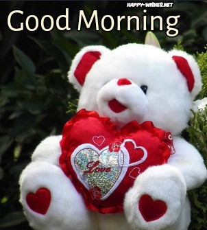 Beautiful Good Morning wishes with Teddy Images