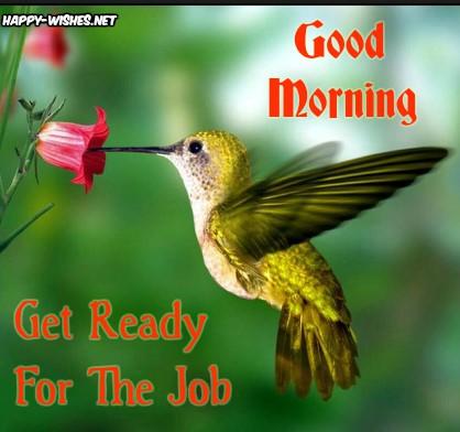 Cute Bird Good MORNING wISHES