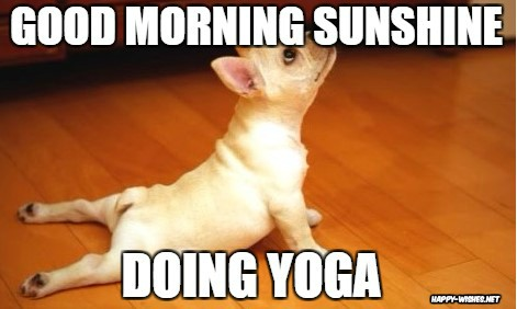 Funny Good Morning Yoga Pictures